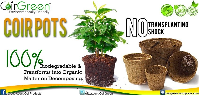 CG Coir pots – An environmentally friendly alternative to plastic pots