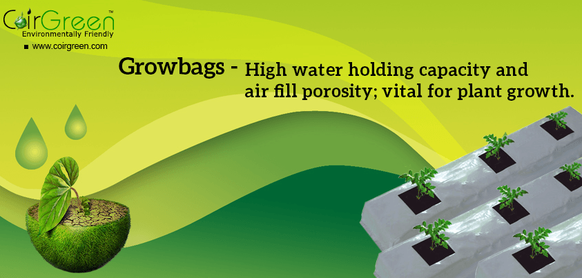 CoirGreen™ Growbags combine the benefits of coir and growbags