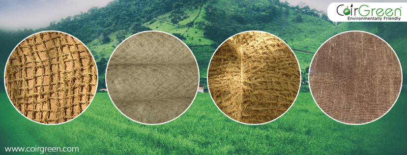 Erosion control products made using coir as raw material