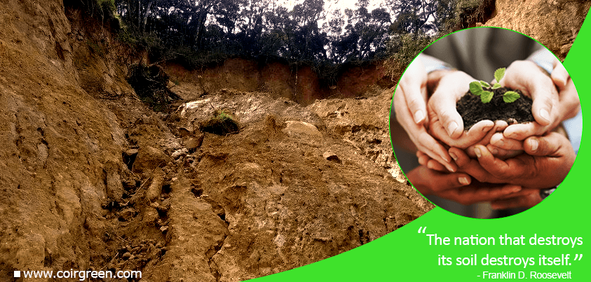 Preventing Soil Erosion – Protecting Humanity