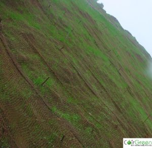Using Coir Geotextiles for soil erosion control
